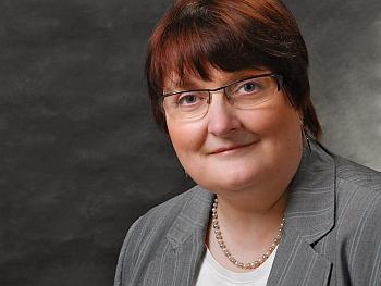 Susanne Plaumann, Beraterin und Trainerin